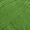 31 Verde Forte [BabyMerinoUniColor]